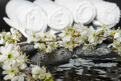 Spring spa setting of zen stones with drops Stock Photo