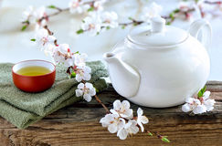 Spring spa tea. White teapot with freshly brewed green spa tea on wooden surface with a cup of healthy calming and detox tea decorated with spring blooming Stock Images