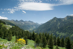 Spring in spanish Pyrenees Stock Photography