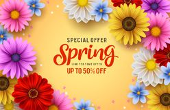 Spring special offer vector banner background with spring season sale text and colorful chrysanthemum royalty free stock image