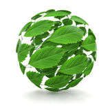 Spring. Sphere from green leaf. 3d Stock Photography