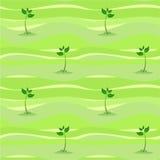 Spring sprout shoot seamless Stock Photos