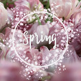 Spring square background Royalty Free Stock Photo