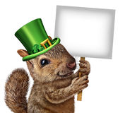 Spring Squirrel Sign. Concept as cute happy wildlife wearing a lucky green saint patricks day hat with four leaf clovers holding a blank signboard or placard as Royalty Free Stock Photo
