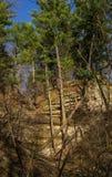 Spring in Starved Rock. Stock Image