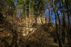Spring in Starved Rock. Stock Images