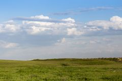 Spring in the steppes of Kazakhstan. In the park in nature Royalty Free Stock Photography