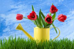 Spring still life Royalty Free Stock Images