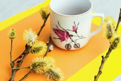 Spring still life with catkin and vintage mug Stock Photo