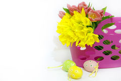 Easter eggs with tulips and daffodils Royalty Free Stock Photo