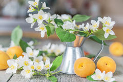 Spring still life Royalty Free Stock Photos