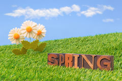 Spring still life with letterpress Royalty Free Stock Image