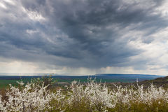 Spring storm Royalty Free Stock Photos