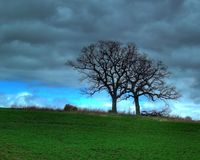 Spring Storm Brewing Stock Photography