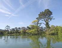 Spring  at Stow Lake, San  Francisco Stock Image