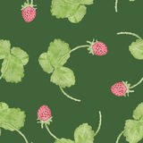 Spring strawberry watercolor seamless pattern. Royalty Free Stock Images
