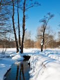 Spring stream. Ice melting on the surface of a park stream Stock Images