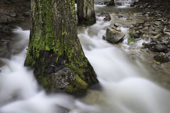 Spring stream flow in Yosemite Valley Stock Photos