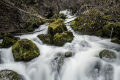 Spring Stream in the Mountain. A Mountain Stream somewhere in Bulgaria in The Early Spring Stock Images