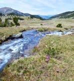 Spring stream of Perafita river in top of valley. The stream of Perafita river flows from the top of Madriu-Perafita-Claror Valley in Andorran Pyrenees. Futher Stock Photo