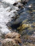 Spring stream rift. On forest waterfall Stock Photography