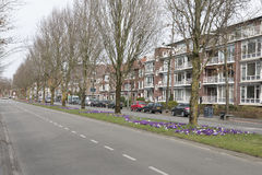Spring on the street. Street view and housing area during spring - March 2017, Groningen Netherlands Stock Photography