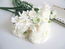 Spring styled stock photo. Still life with daffodils and Persian buttercup flowers, Narcissus, Ranunculus and notebook Stock Photos