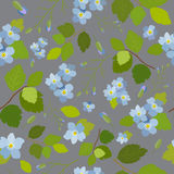 Spring stylish beautiful bright floral seamless pattern. Abstract Elegance vector illustration texture with blue flowers on grey background. Vector Royalty Free Stock Image