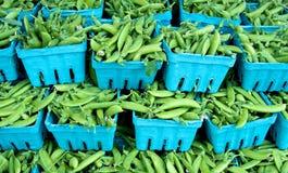 Spring Sugar peas Stock Photo