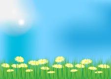 Spring / Summer Background stock illustration