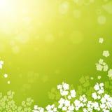 Spring or summer background royalty free illustration