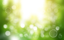 Spring or summer background blur. Stock Photography