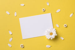 Spring or summer background with copy space for text royalty free stock images