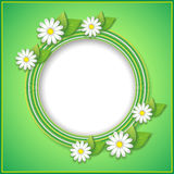 Spring or summer background with decorative flower Royalty Free Stock Photo