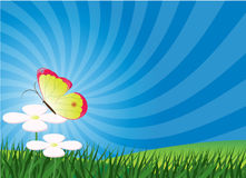 Spring/summer Background Postcard Stock Images
