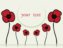 Spring or summer backgrounds with poppy Royalty Free Stock Image