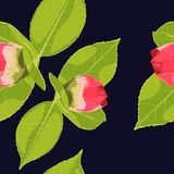 Spring summer bloom. Beautiful background blooming retro flowers. Pink red flowers. Floral baroque. Vintage vector stock illustration textile. Dark blue Stock Photo