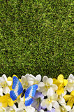Spring or summer border background. With flowers, grass and butterfly.  Space for copy Royalty Free Stock Image