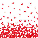 Spring summer card design. banner, red  butterfly on white background. Vector. Illustration Royalty Free Stock Image