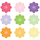 Spring Summer Colorful Floral Royalty Free Stock Photos
