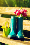 Spring or Summer Concept. Rubber Boots with Gardening Tools on G Stock Photo