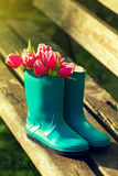 Spring or Summer Concept. Rubber Boots on Wooden Bench with Beau Royalty Free Stock Images