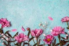 Spring Summer Creative nature background. Pink flowers border stock photography