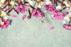 Spring Summer Creative nature background. Pink flowers border on vintage blue background royalty free stock image