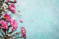 Spring Summer Creative nature background. Pink flowers border on. Vintage blue background stock photo