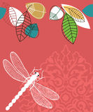 Spring Summer dragonfly Royalty Free Stock Image
