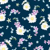 Spring summer field flowers mix pattern navy blue. Spring summer floral botanical seamless pattern. Field meadow countryside flowers collection. Daisy chamomile Royalty Free Stock Image