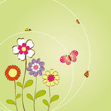 Spring summer floral background Stock Image