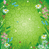 Spring or summer floral background. Spring or summer abstact floral background with green decorative scrollwork Royalty Free Stock Image