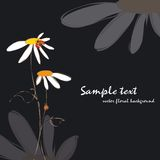 Spring summer floral ladybirds card Royalty Free Stock Photos